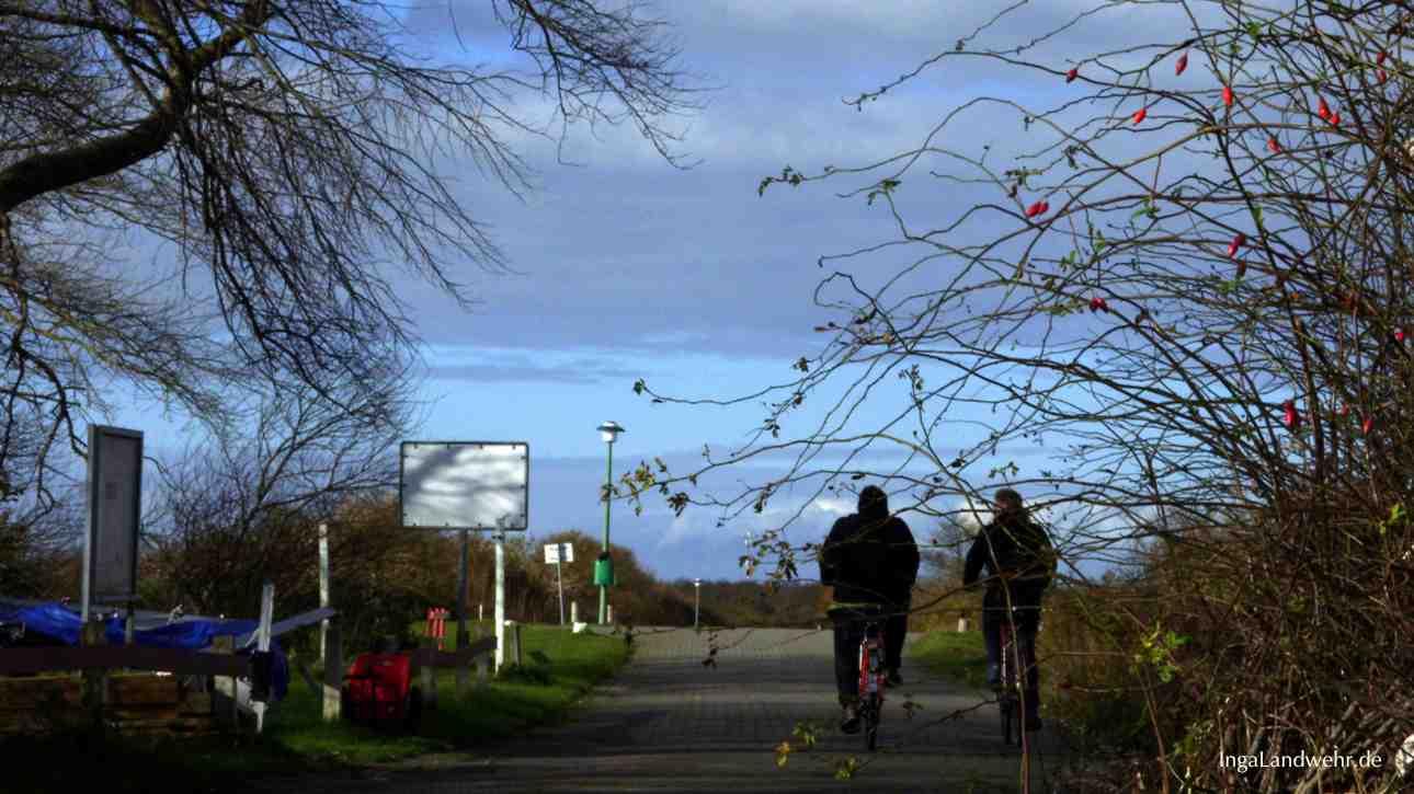 Radfahrer unterwegs in der Natur auf Langeoog