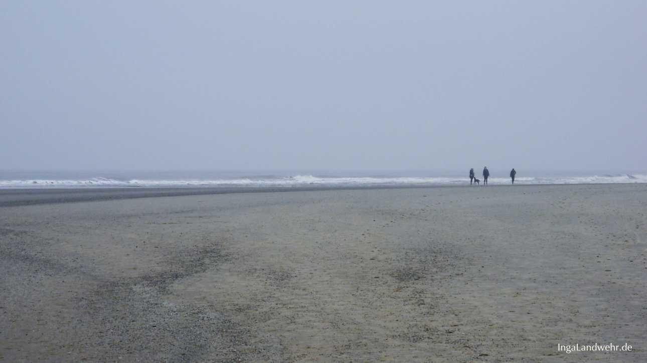 Spaziergang bei Ebbe