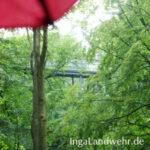 Blick unter dem Regenschirm auf einen Teil des Wipfelpfad