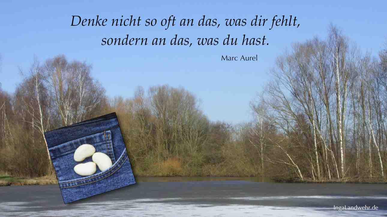Winterbild von der Ochtum mit einem Zitat von Marc Aurel.