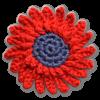 Eine rote Margerirte mit dunklem Kern